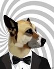 Debonair James Bond Dog by Fab Funky art print