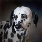 The Firemans Dog Dalmatian by Jai Johnson art print