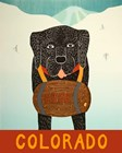 Colorado Beer Dog Black by Stephen Huneck art print