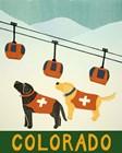 Colorado Ski Patrol by Stephen Huneck art print