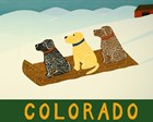 Colorado Sled Dogs by Stephen Huneck art print