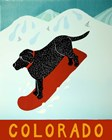 Colorado Snowboard Black by Stephen Huneck art print