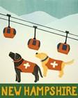 New Hampshire Ski Patrol by Stephen Huneck art print