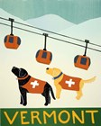 Vermont Ski Patrol Black by Stephen Huneck art print