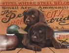 Hunting Puppies by Clarence Stewart art print