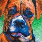 Puppy Dog Eyes II by Walt Johnston art print