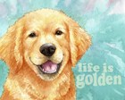Life Is Golden Retriever by Melinda Hipsher art print