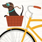 Beach Bums Dachshund Bicycle I by Michael Mullan art print