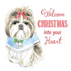 Glamour Pups Christmas II by Beth Grove art print