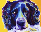 English Springer Spaniel Emma by DawgArt art print