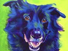 Border Collie - Viktor by DawgArt art print