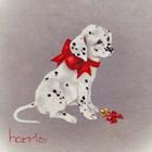 Dalmation Pup by Peggy harris art print