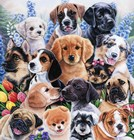 Puppy Collage by Jenny Newland art print