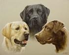 Trio by John Silver art print
