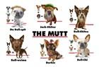The Mutt by Jim Baldwin art print