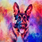 Jazzy German Shepherd by Jai Johnson art print