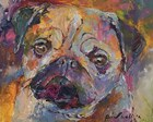 Pug by Richard Wallich art print
