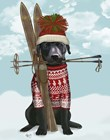 Black Labrador, Skiing by Fab Funky art print