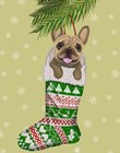 French Bulldog in Christmas Stocking by Fab Funky art print