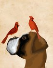 Boxer and Red Cardinals by Fab Funky art print