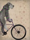Schnauzer on Bicycle, Grey by Fab Funky art print