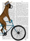 Boxer on Bicycle by Fab Funky art print