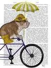 English Bulldog on Bicycle by Fab Funky art print