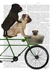 Pugs on Bicycle by Fab Funky art print