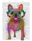 Rainbow Splash French Bulldog, Full by Fab Funky art print