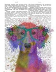 Rainbow Splash Weimaraner, Portrait by Fab Funky art print