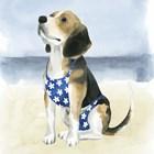 Hot Dog II by Grace Popp art print