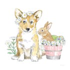 Easter Pups I by Beth Grove art print