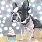 Pug Birthday by Posters International Studio art print