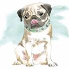 Glamour Pups X by Beth Grove art print