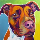Pit Bull - Red by DawgArt art print