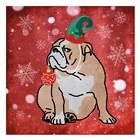Merry Bulldog by Marcus Prime art print