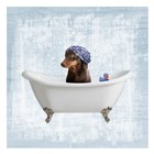 Bath Giggles 3 by Marcus Prime art print