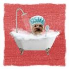Steamy Bath 1 by Marcus Prime art print