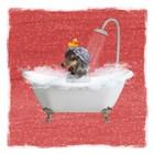 Steamy Bath 2 by Marcus Prime art print