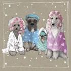 Fancypants Wacky Dogs I by Hammond Gower art print
