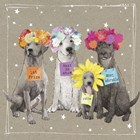 Fancypants Wacky Dogs V by Hammond Gower art print