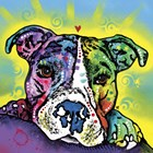 The Baby Pit Bull by Dean Russo art print
