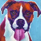 Boxer - Lucy by DawgArt art print