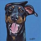 Doberman On Blue by Hippie Hound Studios art print