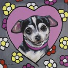 Chihuahua Coco by Hippie Hound Studios art print